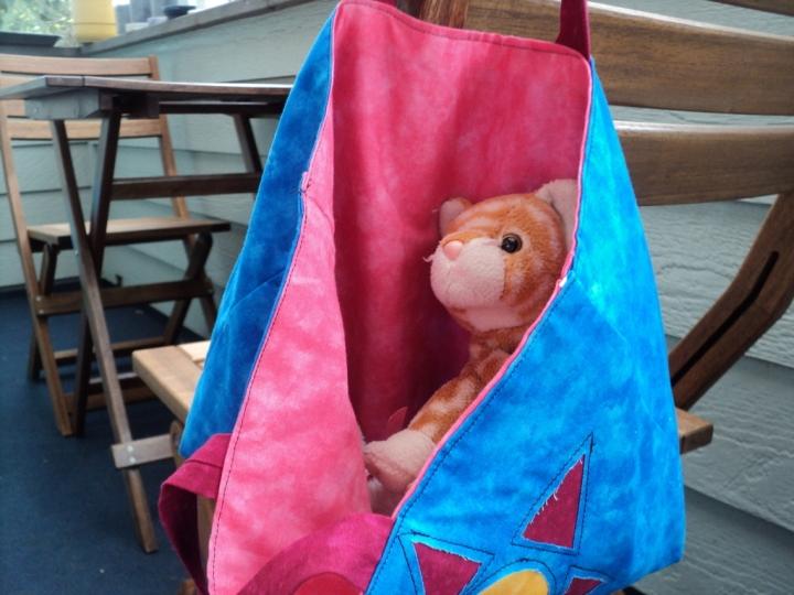 cat_in_the_bag