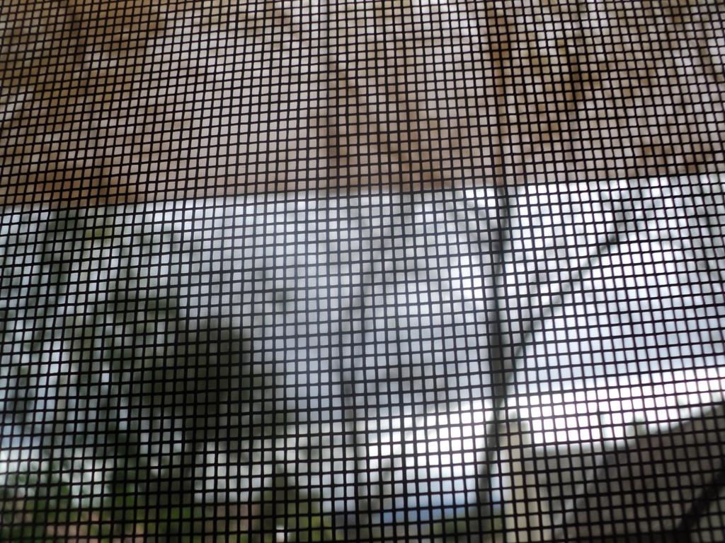 out the screen door