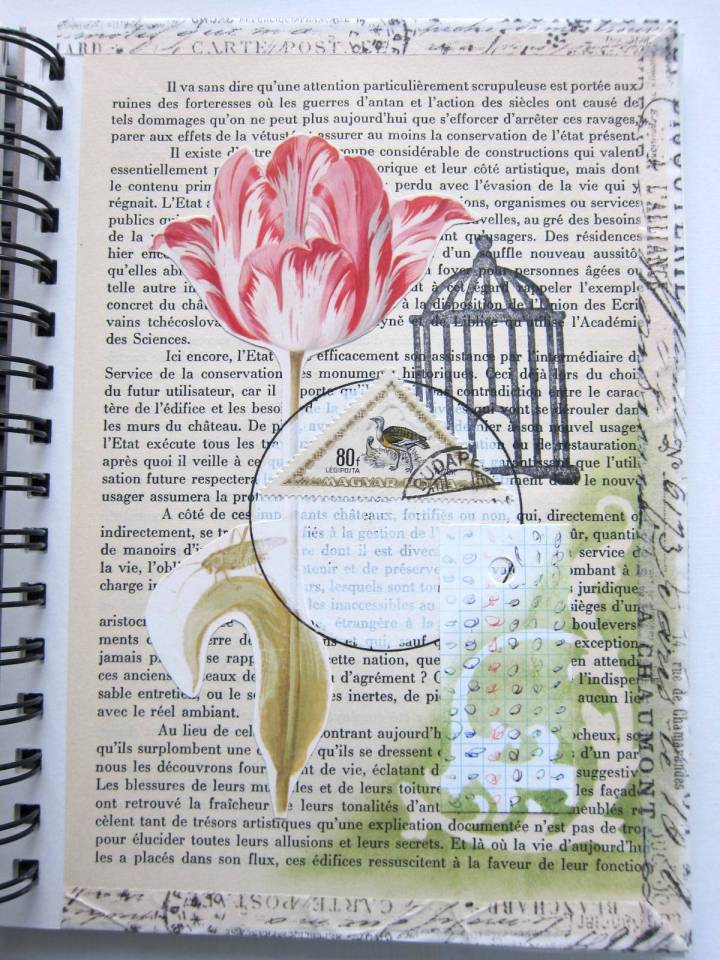 floral birdcage collage